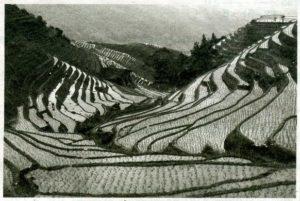 В горных районах, особенно в южных широтах с влажным климатом, земледельцы на склонах гор устраивают террасы.