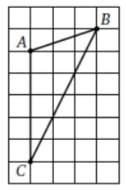 На клетчатой бумаге изображен треугольник АВС. Найдите сумму ∠А + ∠С.