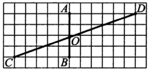 На клетчатой бумаге с размером клеток 1см х 1см отмечены отрезки АВ и CD