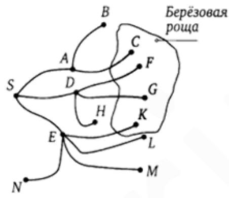 На рисунке показана схема лесных дорожек. Пешеход идет из точки S по дорожкам