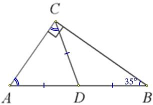 В треугольнике 𝐴𝐵𝐶 𝐶𝐷 − медиана, угол 𝐶 равен 90°, угол 𝐵 равен 35°.